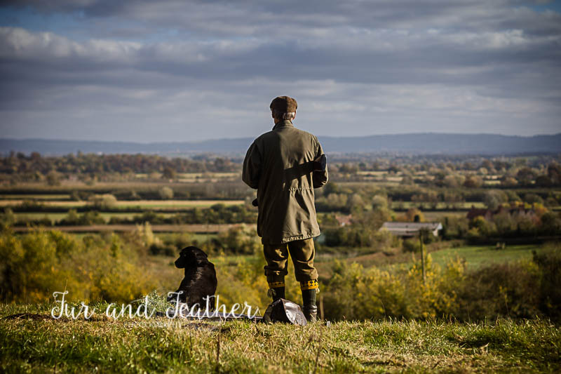 Hasfield Shoot, Gloucestershire 5th November 2016