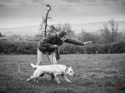 Hasfield Shoot, Gloucestershire 23rd December 2016